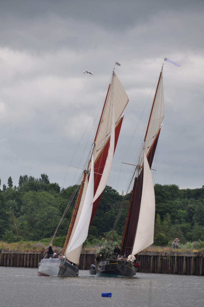 Rowhedge Regatta 2 (© Felicity Monckton)
